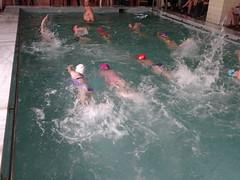 Javni cas obuke plivanja (Pokret za Okret) Tags: za beograd cas bazen sporta 2013 pokret okret obuka javni skolica plivanja