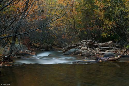 Photo - Lefthand Creek at Buckingham Park, beautiful autumn leaves and color over blurred rapids.