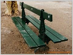 un_banc_vert (Queen Breaca (on ipernity)) Tags: winter paris france green bench frankreich bank vert grn banc friendlychallenges fujifinepixs100fs queenbreaca