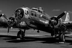 "N3701G ""Chuckie"" Boeing B-17G Flying Fortress C/N 44-8543A (Terry Green) Tags: museum cn flying nikon tillamook air boeing fortress chuckie 2470mm b17g n3701g nikond3s 448543a"