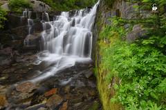 Wonderland (Chris Ross Photography) Tags: park green rock waterfall washington rainier cascades