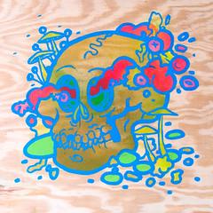 1 (jeremy pettis) Tags: flowers cute art painting skulls moss head fine jeremy anatomy bones hi bone cranium fuzz skully individuals pettis
