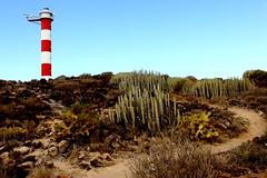 Faro del Fraile (Rgarrez) Tags: cactus espaa lighthouse ruta trekking canon faro canarias tenerife caminata dpp malpais piedras vegetacin 500d fraile chumberas
