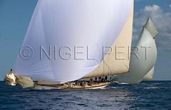 _NPO7933_N_Pert (nigelpert) Tags: photos images monaco voile regattas classicyachts voiliers rgates 2013 tuiga monacoclassicweek nigelpert yachtsclassiques