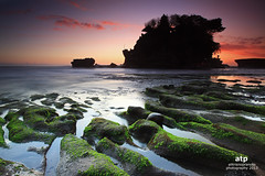 Tanah Lot in Colours! (ali trisno pranoto) Tags: sea sky bali sun green indonesia landscape temple moss rocks great culture grand tanahlot nset alitrisnopranoto