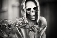 days gone (bluechameleon) Tags: blackandwhite bw tree halloween leaves vancouver death skull scary bokeh creepy explored bluechameleon sharonwish macambre bluechameleonphotography