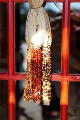 DSC02475 (Z!SL) Tags: door nyc red newyork brooklyn corn outdoor sony decoration mirrorless sonyphotographing emount minoltaemount sel50f18 nex5r