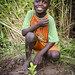 Plantation_arbre_enfant-reforestation