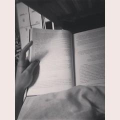 1395445_537798899636217_1708409591_n (karinasomenzi) Tags: book eu livro ameninaqueroubavalivros