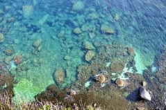 Seabed (Julien Falissard) Tags: mer water eau corse pierre turquoise marin corsica bleu couleur fond bonifacio 2013