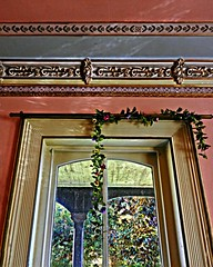 A Front Window:  A Secret Victorian Mansion, Eastern North Carolina (EdgecombePlanter) Tags: light shadow texture window architecture nc vines victorian northcarolina landmark historic fancy windowview mansion ornate textured masterpiece cornice plasterwork trompeloiel fauxpainting