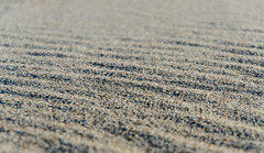 the Beach (Strongkanebu) Tags: sea beach strand sand nikon meer d7000