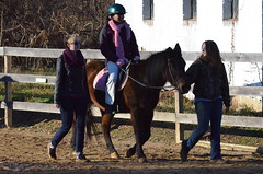 2013-12-15 (82) Miss Nicole's Winter Horse Show (JLeeFleenor) Tags: horses youth caballo cheval photography md photos uma maryland cal jockey horseshow jinete cavallo cavalo pferd equestrian kuda alogo horsebackriding equine hest thoroughbreds soos hevonen cuddy paard cavall kon koin  jokey fantino hst ceffyl  jquei  ko faras hestur  perd croom ngi  konj    capall beygir yarraman dokej youngriders therapeuticriding youthactivities rennreiter missnicole  pfeerd   okej kilparatsastaja jocheu