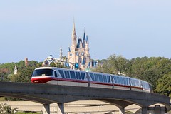 Monorail Passing Cinderella Castle