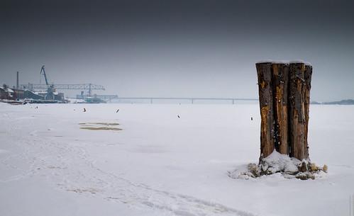 Winterland by Alexander Kozlov, on Flickr