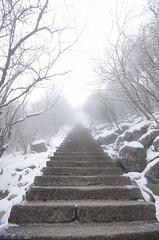 Mt_Huangshan7