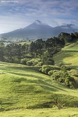 Mount Egmont (Michael Baynes Photography) Tags: newzealand cloud mountain tree landscape farm mount nz mtn northisland taranaki newplymouth mounttaranaki mountegmont