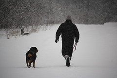 Canon Rebel XS w/55-250mm IS STM (Jamaalism) Tags: winter snow ontario canada canon rebel xs thornhill settlerspark nikon1j3vscanonrebelxs 55250mmisstm
