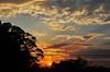 ღ. (Ruby Ferreira ®) Tags: trees sunset silhouettes pôrdosol wires fios notreatment nuvensclouds brasilemimagens casadafilha housesdaughter