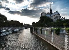 Paris Series 2014 (World of Pjotr) Tags: paris notre dame parijs