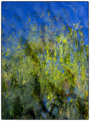 Sogna Inspiration #10 (Krogen) Tags: nature norway norge natur may norwegen mai noruega scandinavia akershus springtime romerike vår krogen noorwegen noreg skandinavia nannestad sogna romerikelandskapsvernormråde olympusep2
