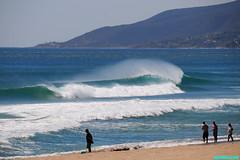 ZB2600 (mcshots) Tags: ocean california travel sea usa beach nature water coast surf waves stock surfing socal surfers breakers mcshots swells springtime combers losangelescounty