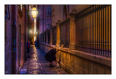 Feeding the Stray Cats (Kevin, from Manchester) Tags: architecture building canon1855mm croatia dalmatiancoast dubrovnik hdr historical kevinwalker oldcity oldtown photoborder street cats woman lamps streets