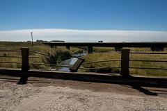 De Noche #43 (Rubén Pinella) Tags: denoche lunallena puente arroyo puentes baranda agua pastizal rubénpinella
