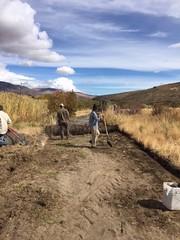 IMG_1427 (Oregon Natural Desert Association) Tags: denny jones ranch weed mat removal 2016 stewardship trips