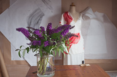 Studio view with Buddleja (Yuko Nagai) Tags: textileart artiststudio workinprogress creativeprocess natureasaninspiration fabricdyeing