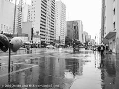 Avenida Paulista, Sao Paulo Brazil (Onildo Lima Photography) Tags: yellow sao paulo brazil bairro neighborhood avenida avenue city ciudad cidade street rua calle station metro lina 2 verde green bela vista bixiga onildo lima sony cybershot dsc wx50
