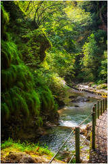 Sentiero in Val Vertova (BG) (mauro.cagna) Tags: nikon sigma d5100 val vertova acqua bergamo