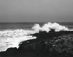 r011-04 (sheelkapur) Tags: mediumformat epson v800 analog analogue film landscape ocean filmisnotdead ishootfilm ilford hp5 iso400 mamiya rz67 pro gameoftones waves pescadero california tones sekkor