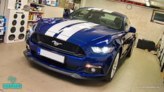 Mustang_28 (holloszsolt) Tags: ford mustang 50 outdoor vehicle sport car nanolex si3 hd autokeramia