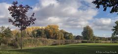 Zuiderpark panorama. (PvRFotografie) Tags: nederland holland rotterdam rotterdamzuid zuiderpark nature natuur panorama herfst autumn tree trees bomen boom uitzicht view vintagelens sonya900 minolta 35mm minoltamcwrokkorhg35mmf28