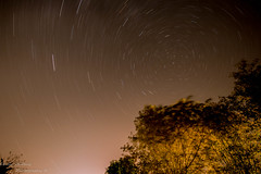 Star Trails (Emily Starbug Photography) Tags: star trails astrography norfolkbroads sigma1020mm long exposure firstattempt polar emilystarbug canon 70d