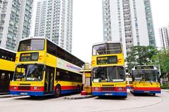 FC2566 | 88R; FC6490 & EX4327 | Private Hire (TommyYeung) Tags: citybus ctb cityoneshatin leyland olympian leylandolympian walteralexanderrh walteralexander alexander alexanderrh doubledecker doubledeck 3axle singledoor dennis dennisdart dart midibus dennismidibus carlyle carlyleworks 2axle singledecker singledeck singledeckbus bus buses transport hongkong hongkongbus hongkongtransport hongkongbuses shatin busterminus city building capture vehicle classicvehicle vehiclespotting fc2566 fc6490 ex4327