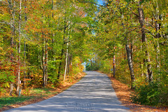 Country Drive - Putnam County, Tennessee (J.L. Ramsaur Photography) Tags: jlrphotography nikond7200 nikon d7200 photography photo cookevilletn middletennessee putnamcounty tennessee 2016 engineerswithcameras cumberlandplateau photographyforgod thesouth southernphotography screamofthephotographer ibeauty jlramsaurphotography photograph pic cookevegas cookeville tennesseephotographer cookevilletennessee tennesseehdr hdr worldhdr hdraddicted bracketed photomatix hdrphotomatix hdrvillage hdrworlds hdrimaging hdrrighthererightnow landscape southernlandscape nature outdoors god'sartwork nature'spaintbrush fall fallcolors fallleaves fallseason fallinthesouth colorful colors autumn autumncolors autumninthesouth autumnleaves falltrees autumntrees countrydrive perspective perspectiverules vanishingpoint road roadside countryroad backroads rural ruralamerica ruraltennessee ruralview smalltownamerica americana