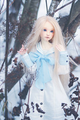 Solaris (T e s l a) Tags: ninodoll shampoo dollstown body