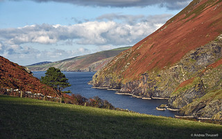 Autumn colours at Fleshwick, Isle of Man
