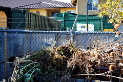 Compost and Trash