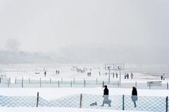 winter (Anna-logisch) Tags: outsideisfree landschaft landscape küste coast ostsee balticsea snow cold kälte nikond7000