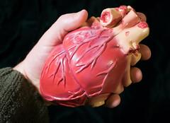 behold her heart 01 nov 16 (Shaun the grime lover) Tags: snowwhite pig heart plastic fairy folk take