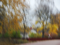 Fr 1 mnad sedan (evisdotter) Tags: oktober22 hst autumn icm intentionalcameramovement trees leaves sooc