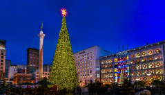shoppers gather in mass (pbo31) Tags: sanfrancisco california nikon d810 november 2016 fall city bayarea boury pbo31 color night dark black panoramic large stitched panorama unionsquare christmas urban holidays macys shopping season christmastree lights
