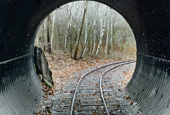 A Tunnel (and a gray day) (Chancy Rendezvous) Tags: ecotarium tunnel train rails railroad ties autumn worcester massachusetts chancyrendezvous