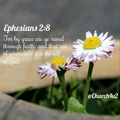 """Ephesians 2-8 """"For by grace are ye saved through faith; and that not of yourselves: it is the gift of God:"""" (@CHURCH4U2) Tags: bible verse pic"""
