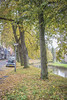 IMG_9765 (digitalarch) Tags: 네덜란드 히트호른 netherlands giethoorn