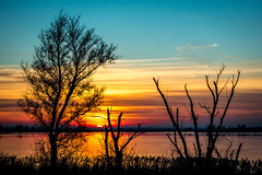 Lelystad knardijk sunset