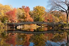 Bow Bridge (Timothy Schenck) Tags: centralpark bowbridge nyc architecture landscapearchitecture reflection autumn